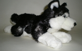 00149 Husky, Lying, With Beans, 10inch L, B And W