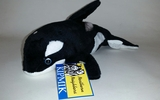 00600 1 Killer Whale, 9 Inch, Front View